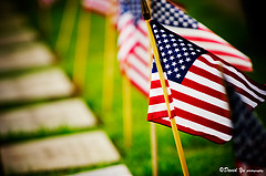 Memorial Day Thoughts and Reflections