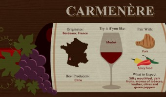 Have You Tried These Red Wine Varieties?