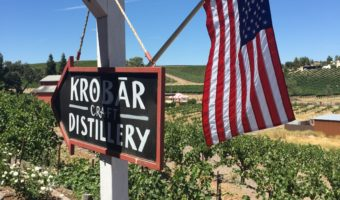 A Day in Paso Robles: Burgers, Wine, and Spirits