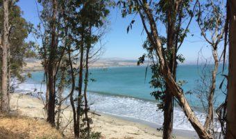 Adventure: Ragged Point and San Simeon
