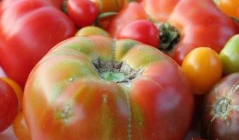 Heirloom Tomato Festival 2017