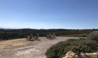 Paso Robles Wine: Calcareous Vineyard