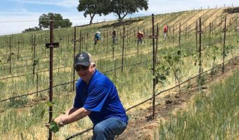 Q&A with Jim Saunders from Hearst Ranch Winery