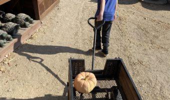 Paso Robles: Jack Creek Farms