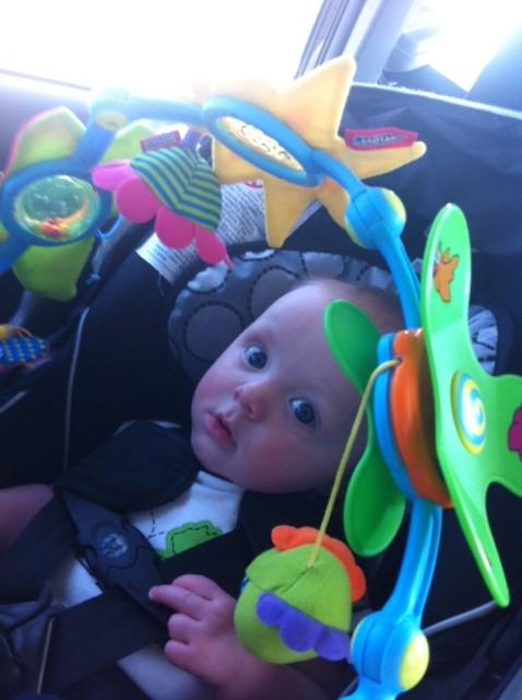 Sammy's Road Trip