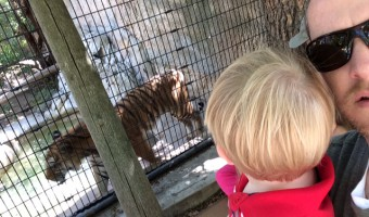 The First Zoo Visit