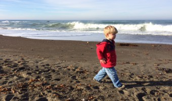 Sammy Adventures: Moonstone Beach in Cambria, CA.