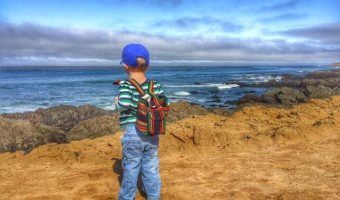Adventures with Sammy: Harmony Headlands State Park